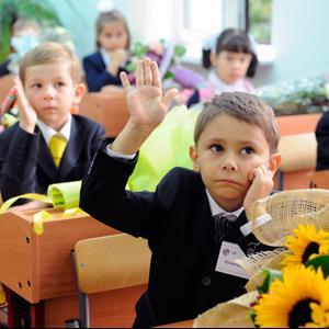 Школы Кашина